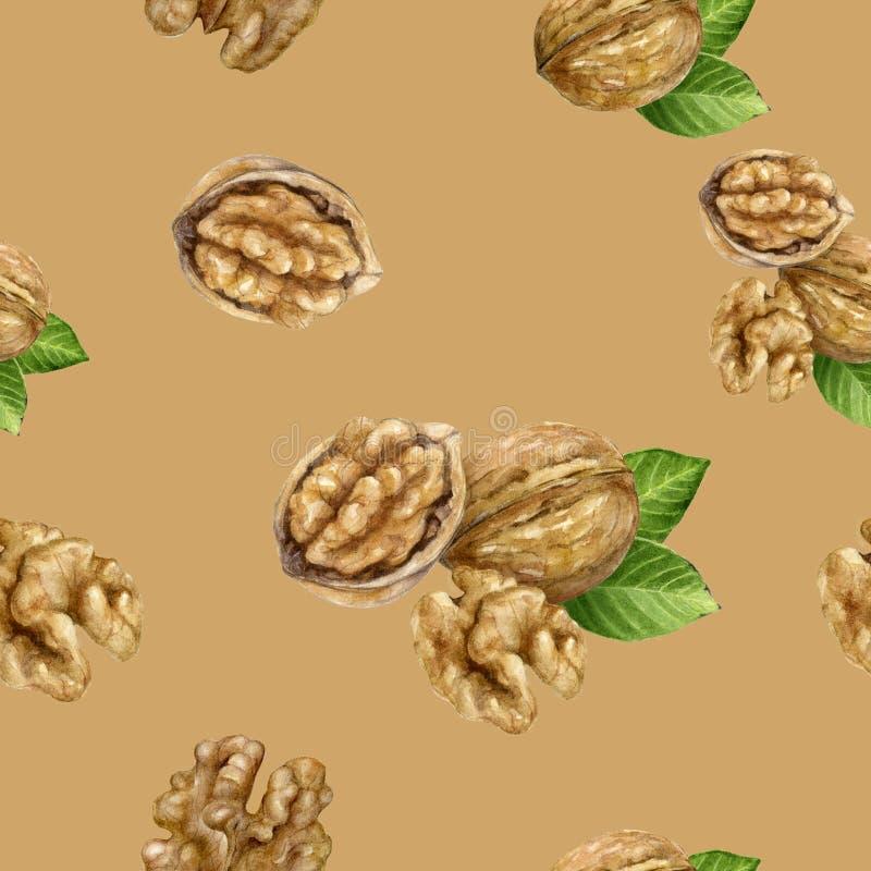 Walnut hand drawn watercolor illustration. Seamless pattern. Seamless walnut watercolor pattern. Hand drawn watercolor illustration vector illustration