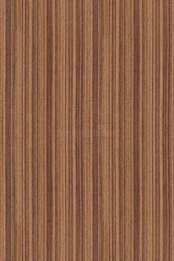 Seamless walnut (wood texture) royalty free stock photo