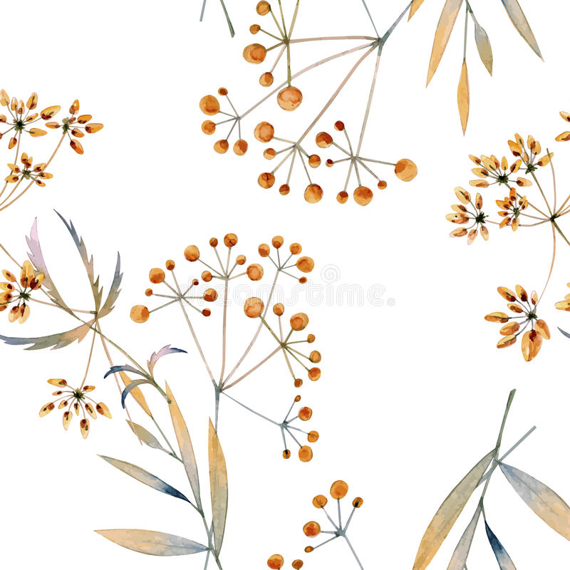 Seamless watercolor background consisting of dried flowers. Branches with thin leaves and berries royalty free illustration