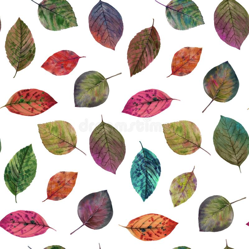 Elegant leaves for design. Colorful autumn leaves. Seamless watercolor pattern of leaves. Seamless watercolor flowers pattern. Hand painted colorful flowers royalty free illustration