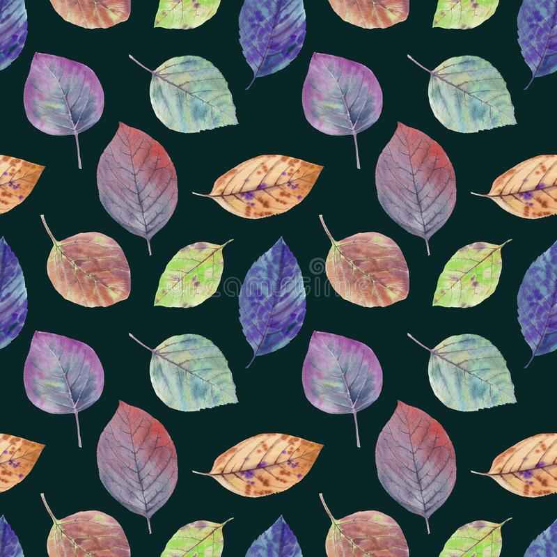 Autumn leaves of different colors drawn watercolor. stock image