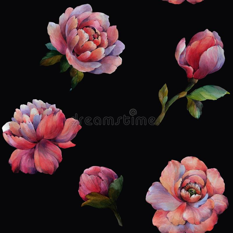 The composition of the flowers of peony. Seamless watercolor pattern of flowers. Botanical pattern. Watercolor peonies. royalty free illustration