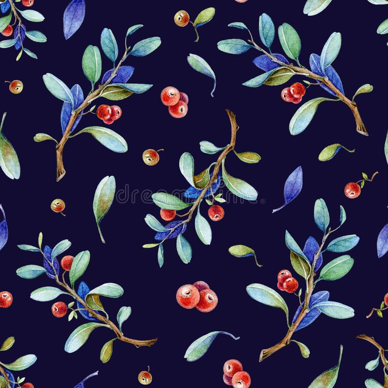 Seamless watercolor hand painted cowberry pattern with realistic red berries and nature elements. Lingonberry dark navy background vector illustration