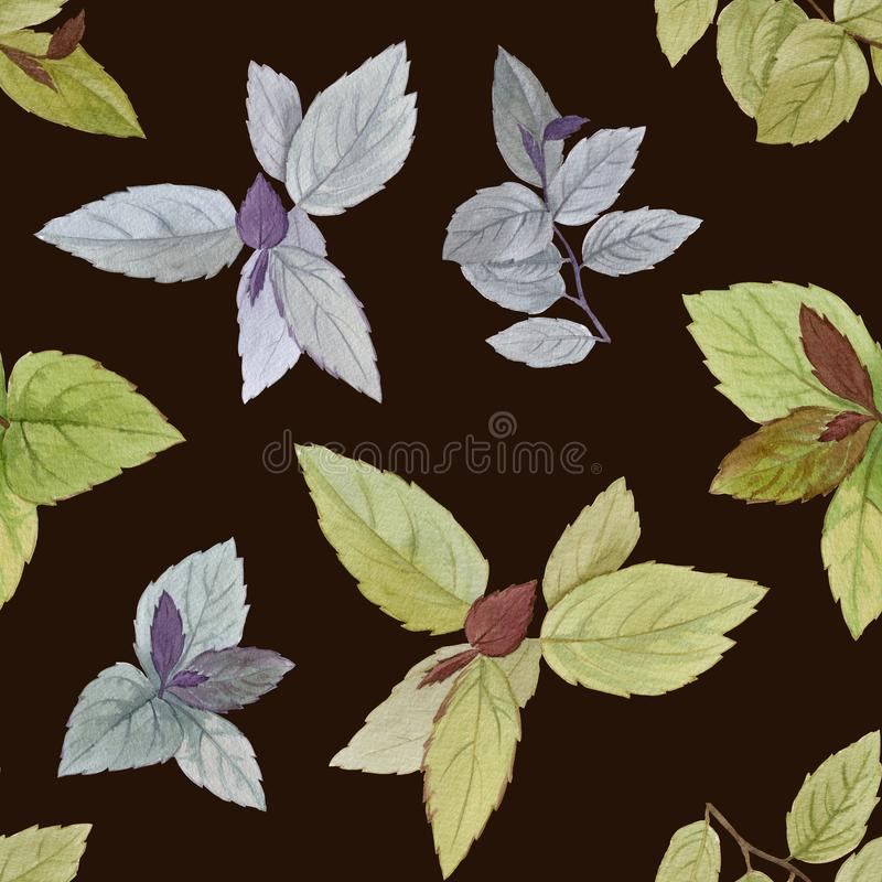 Seamless watercolor pattern. Drawn leaves for packaging, wallpaper, fabric. Design element. Watercolor painted leaves. Elegant lea royalty free illustration