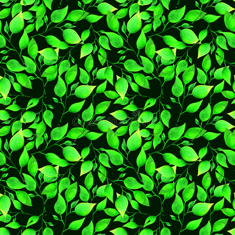Seamless watercolor pattern with green leafs on dark green background. Endless artwork hand-drawn. Floral wallpaper vector illustration