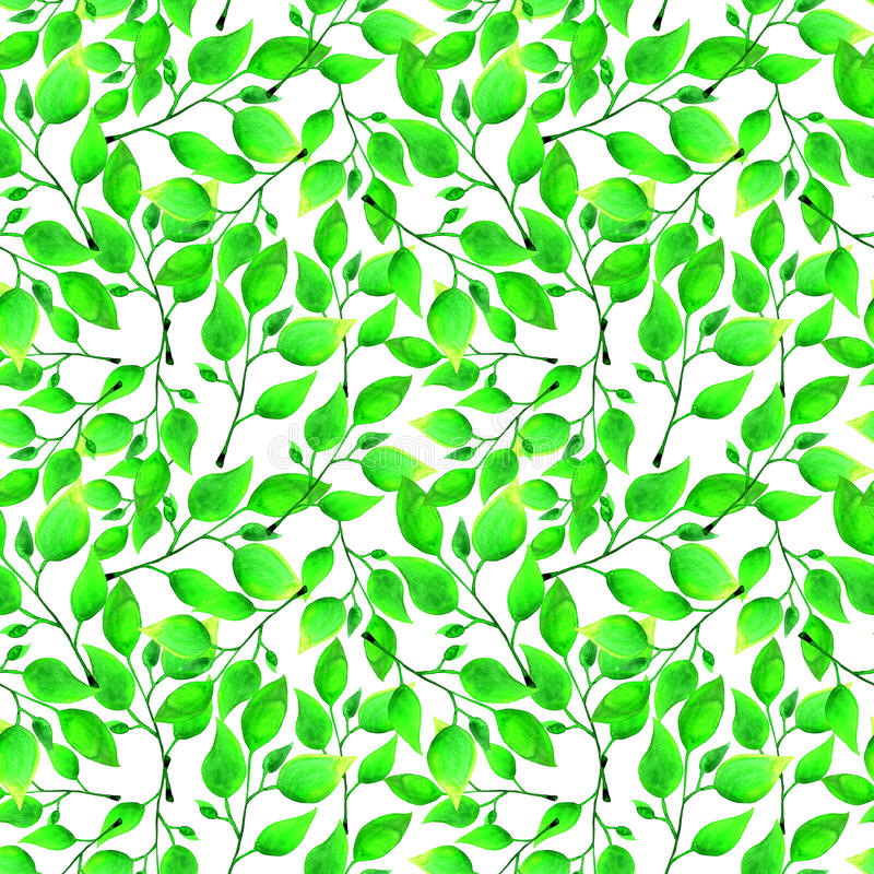 Seamless watercolor pattern with green leafs on white background. Endless artwork hand-drawn. Floral wallpaper summer stock illustration