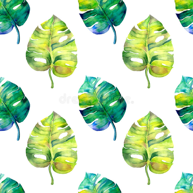 Seamless watercolor pattern with monstera leaves vector illustration