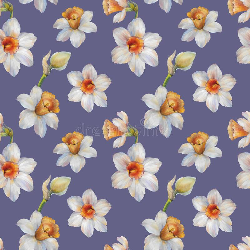 Seamless watercolor pattern of narcissus flowers. Watercolor illustration. stock illustration