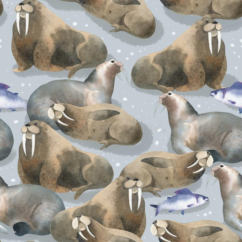 Seamless watercolor pattern about north fauna. Sea animal and fish. Brown warlus on snow royalty free illustration