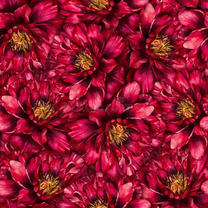 Seamless watercolor pattern with peonies vector illustration