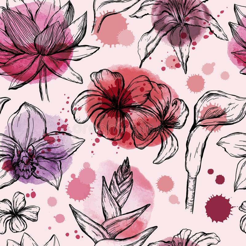 Seamless watercolor pattern with sketch of Tropical flowers - Water lily, orchid, plumeria, frangipani and hibiscus royalty free illustration