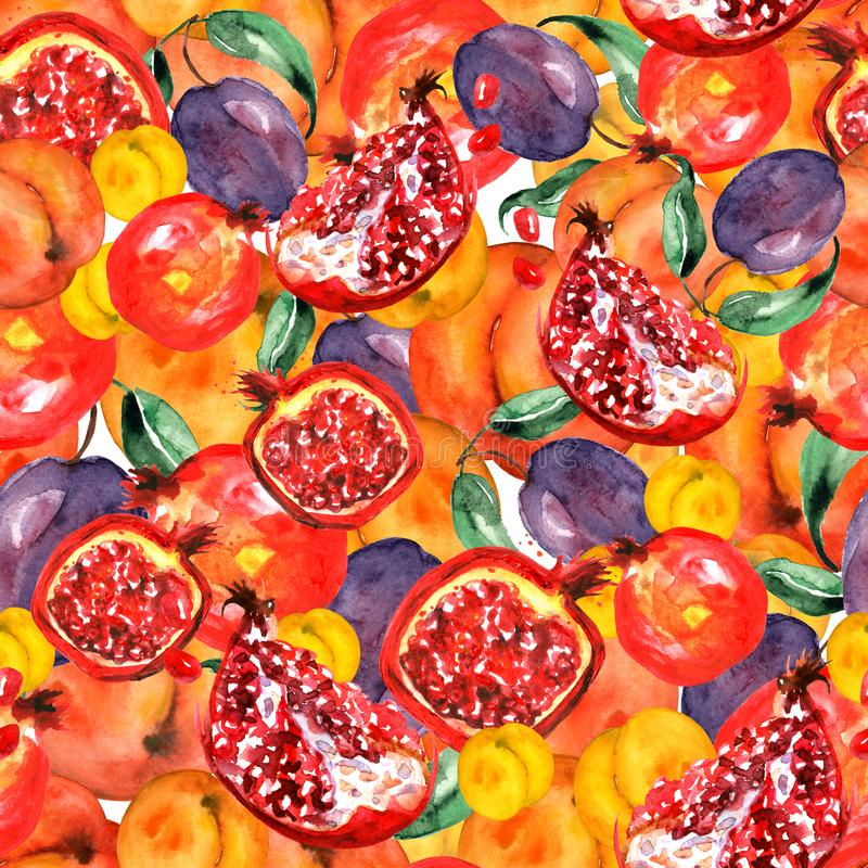 Seamless watercolor pattern with slices fruits, pomegranate fruit, peach fruit, plum, apricot, watermelon. Orange, purple royalty free illustration