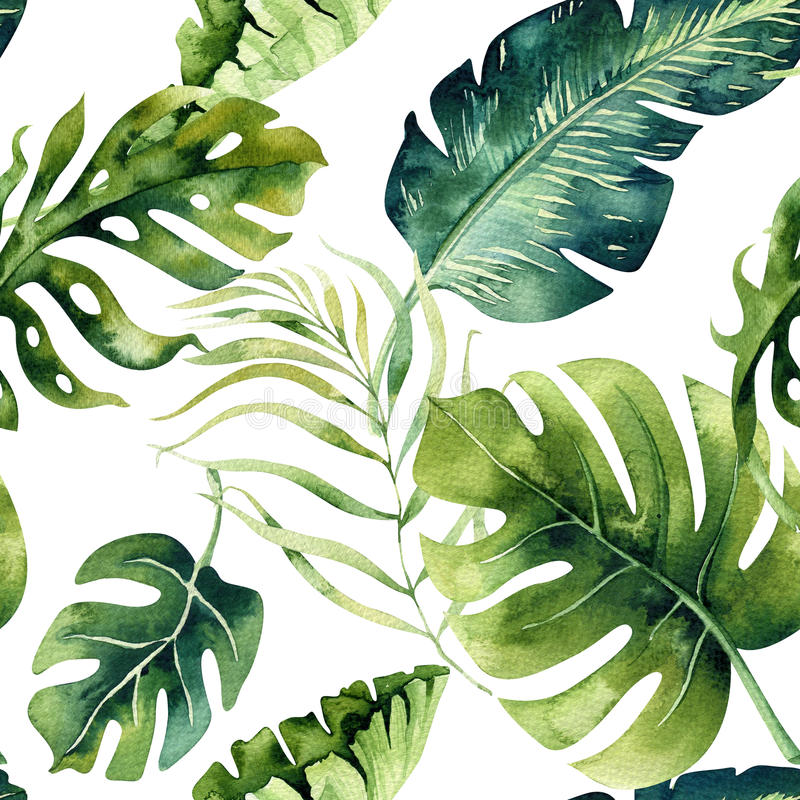 Seamless watercolor pattern of tropical leaves, dense jungle. Ha royalty free illustration