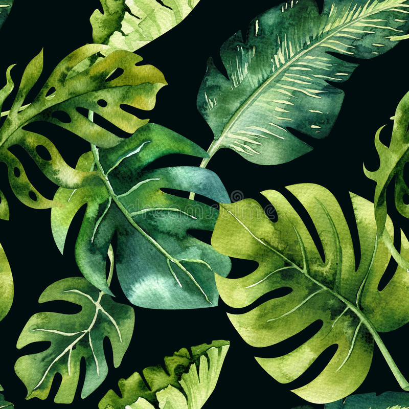 Seamless watercolor pattern of tropical leaves, dense jungle. Ha royalty free stock photos