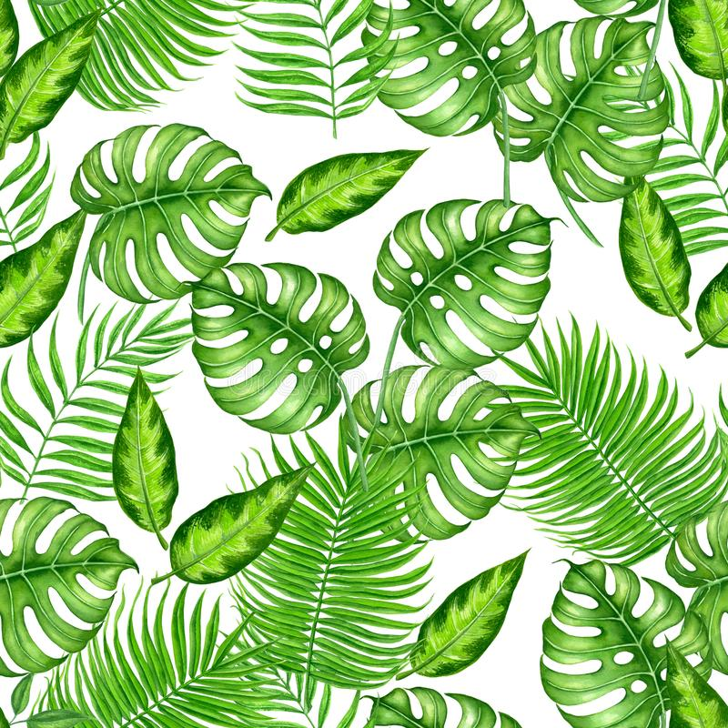 Tropical watercolor pattern. Seamless watercolor pattern with tropical leaves. Element for design stock illustration