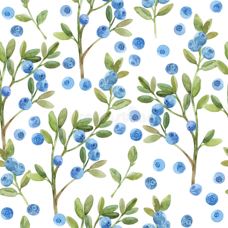 Seamless watercolor pattern with twigs of blueberry. Hand-drawn stock illustration