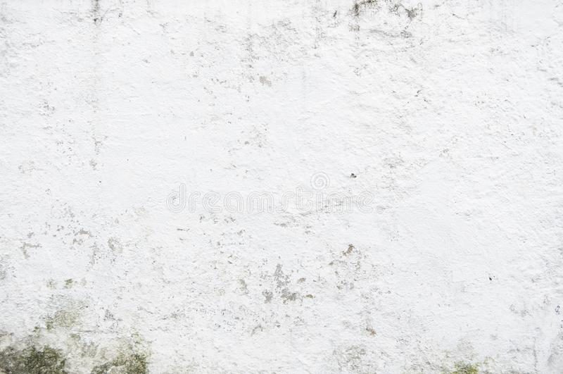 Seamless White Wall Paint Texture for Background and Overlay. Simple White Cement Wall grungy. Texture for background and design art work. Pattern texture royalty free stock image