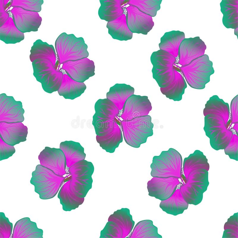Seamless wild floral pattern with nasturtium. Bright hibiscus flowers on white background. Botanical Motifs scattered random. royalty free illustration