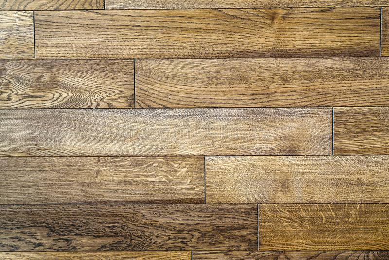 Seamless wood floor texture, hardwood floor texture. Wooden parquet royalty free stock photos