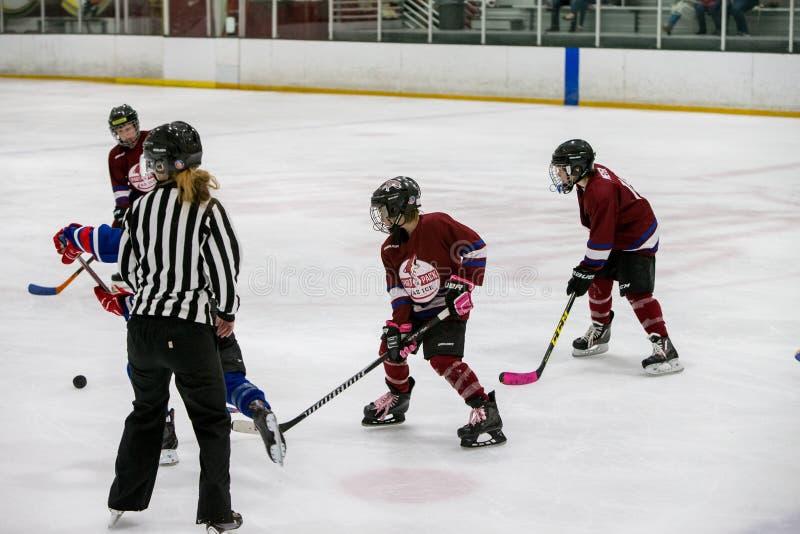 20161204.135002.sean_fall_hockey_game.9137 Free Public Domain Cc0 Image
