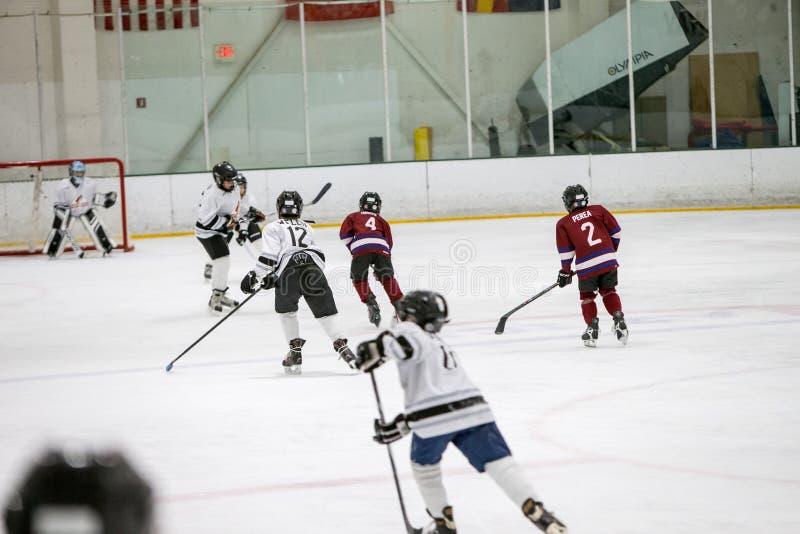 20161218.141200.sean_fall_playoff_hockey_game.0386 Free Public Domain Cc0 Image