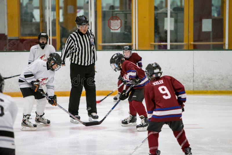 20161218.133549.sean_fall_playoff_hockey_game.0257 Free Public Domain Cc0 Image