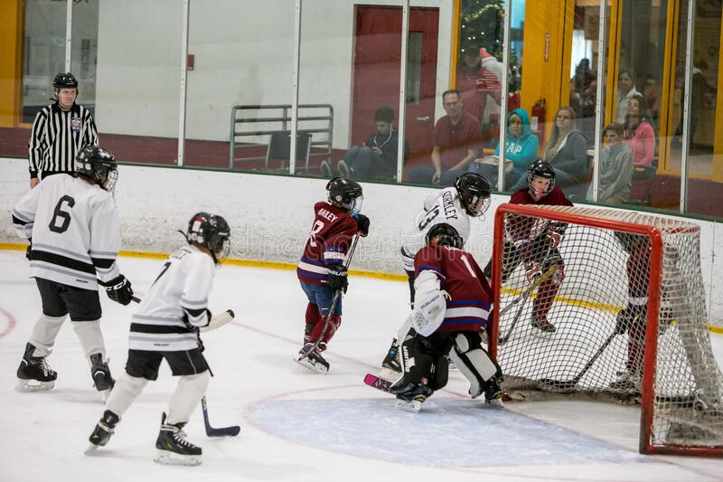 20161218.143004.sean_fall_playoff_hockey_game.0481 Free Public Domain Cc0 Image
