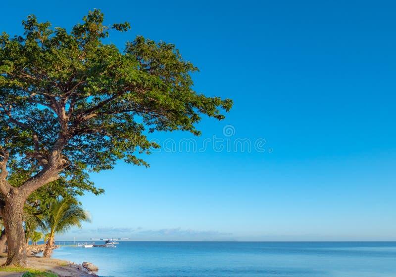 Seaplane στην αποβάθρα σε ένα τροπικό νησί μια φωτεινή ημέρα στοκ εικόνες με δικαίωμα ελεύθερης χρήσης