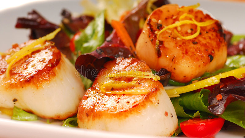 Download Seared scallops stock photo. Image of diet, seared, seafood - 5877880
