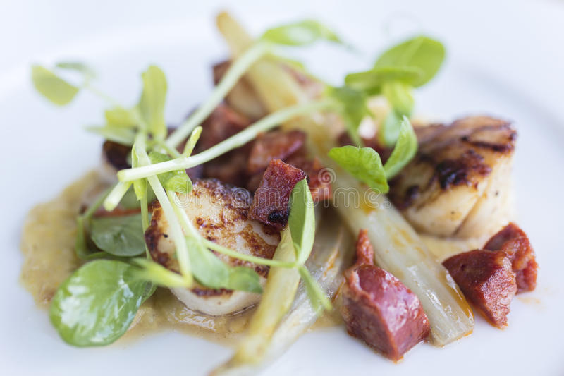 Seared Scallops and Chorizo With Watercress stock images