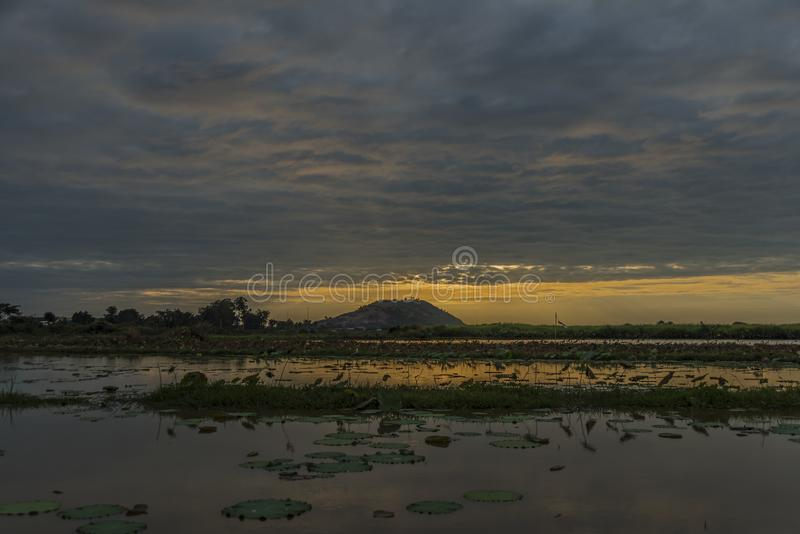 Seas and flora near Siem Reap city. In January evening royalty free stock image