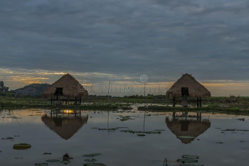 Seas and flora near Siem Reap city. In January evening stock photos