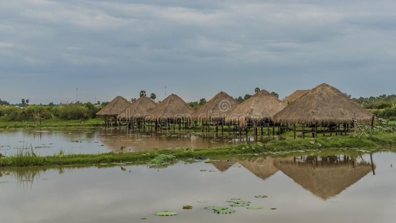 Seas and flora near Siem Reap city. In January evening royalty free stock images