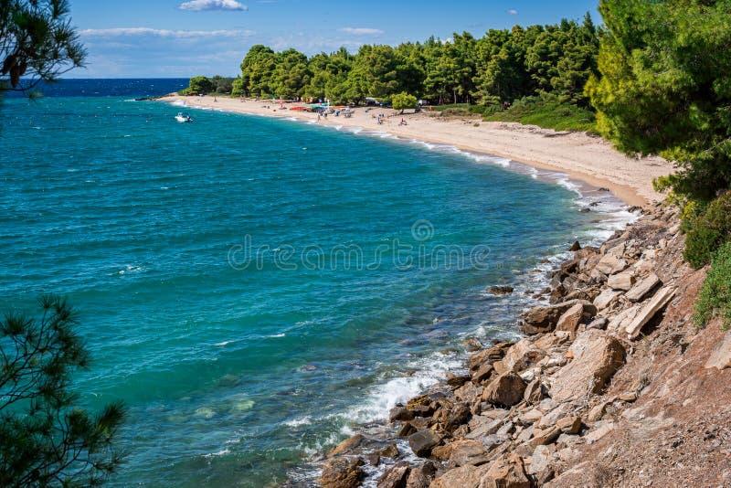Seascape τοπίου στη χερσόνησο Halkidiki, Ελλάδα Αμμώδης παραλία με τα πράσινα πεύκα Έννοια διακοπών ταξιδιού και καλοκαιριού στοκ φωτογραφία με δικαίωμα ελεύθερης χρήσης