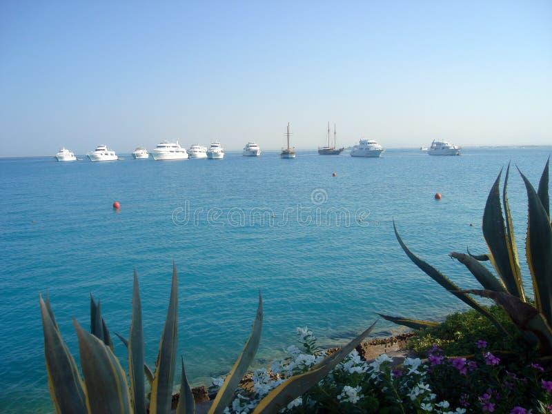 Seascape Красного Моря стоковая фотография