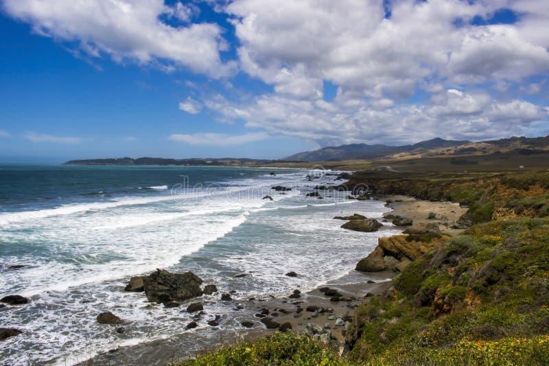 Seascape на побережье Калифорния центральном под голубым небом с цветками весны стоковое изображение rf