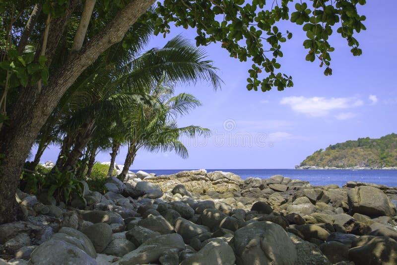 Seascape с лазурной водой, утесом, большими камнями и тропическими утесами побережья леса стоковые фото