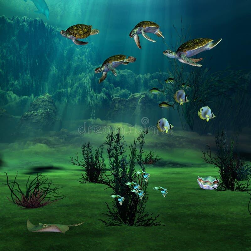 seascape ελεύθερη απεικόνιση δικαιώματος