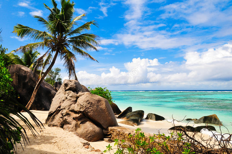 Download Seascape stock image. Image of cloud, seychelles, palm - 27434849