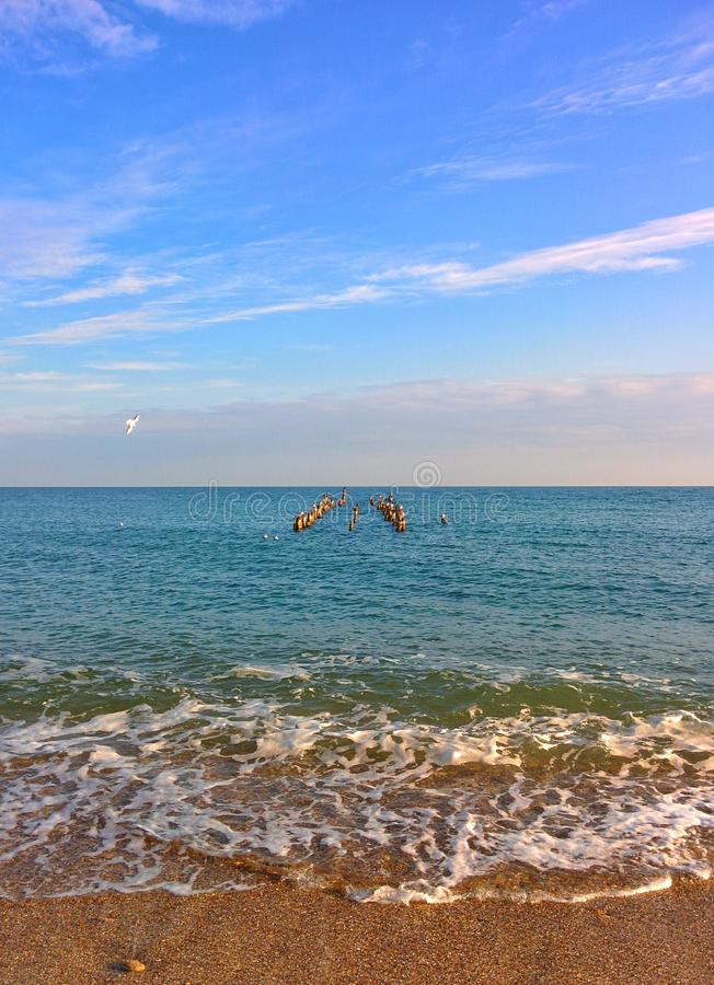 Seascape com as gaivota em colunas fotos de stock royalty free