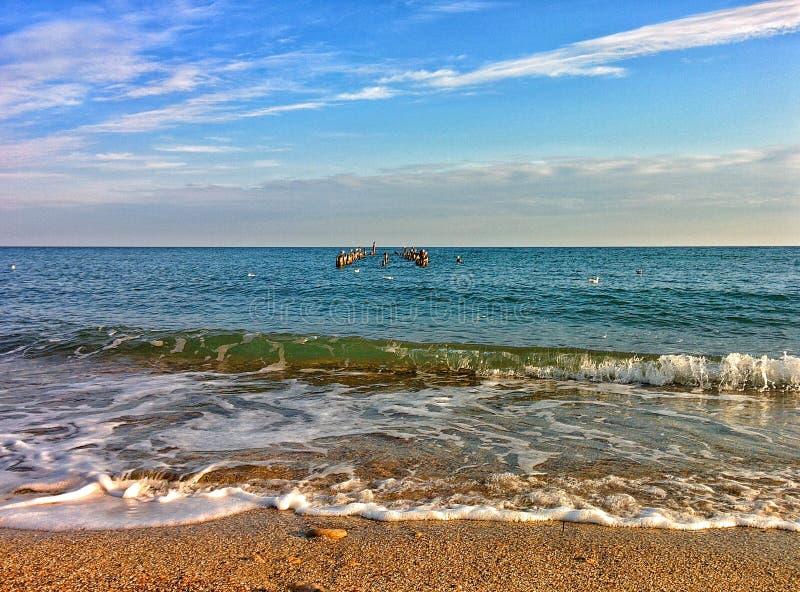 Seascape com as gaivota em colunas fotos de stock