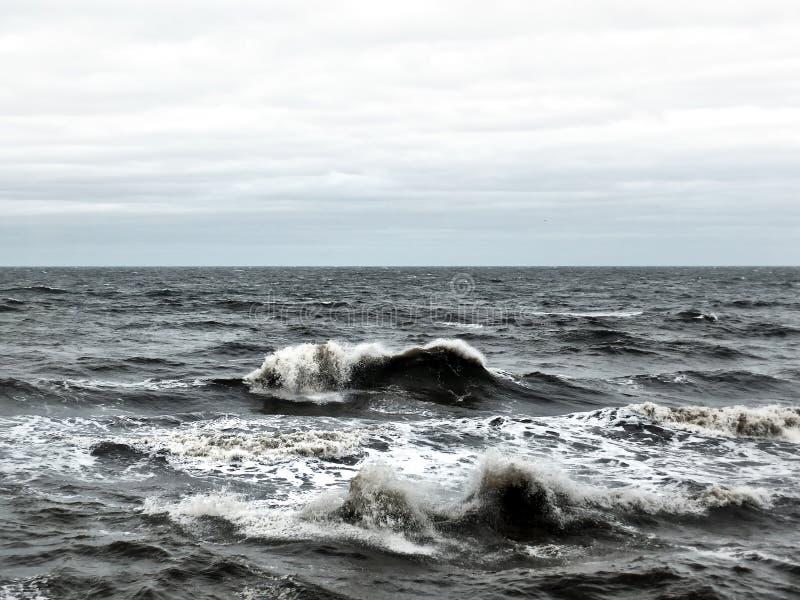 Seascape com quebra de ondas tormentosos com o céu pálido do inverno imagem de stock royalty free