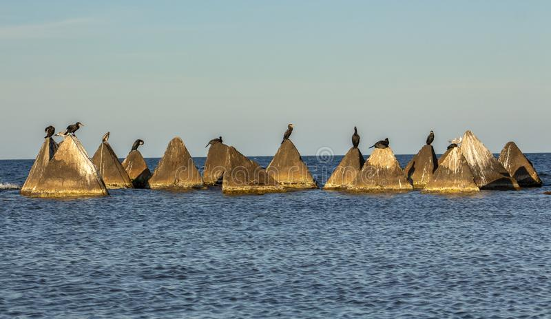 Seascape. Concrete pyramids with cormorants and gulls in the light before sunset. Shabla municipality is the most eastern municipality of Bulgaria. The length stock photo