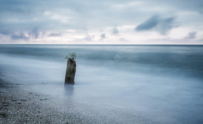 Seascape de Minimalistic Coto velho na ?gua foto de stock royalty free