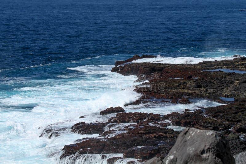 Seascape dos consoles de Galápagos fotos de stock