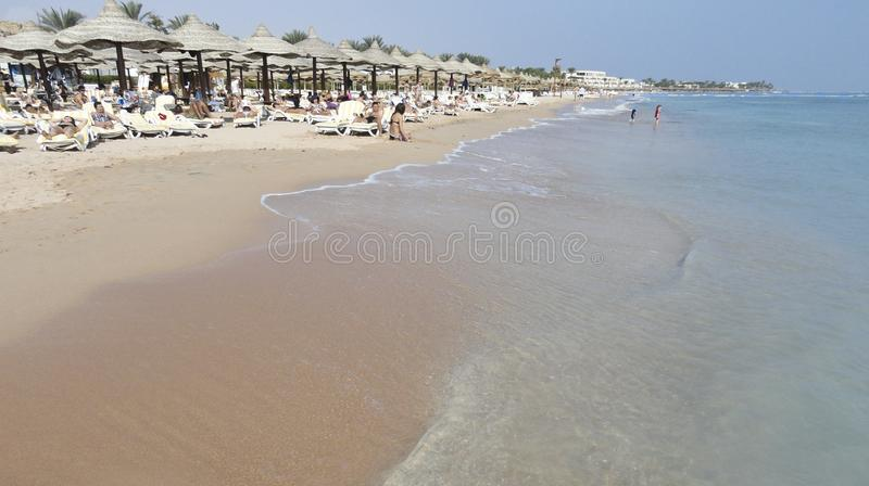 Endless beach with yellow sand, sun beds and umbrellas and azure sea royalty free stock photos