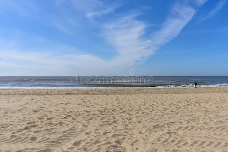 Seascape horizon line Sandy Beach Netherlands. Heavenly expanse stock image