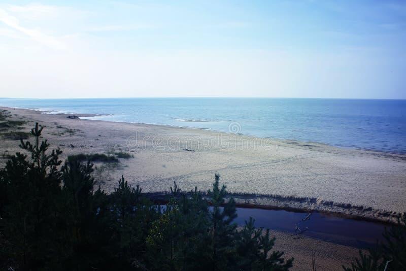 Download Seascape i Lettland fotografering för bildbyråer. Bild av vass - 78726199