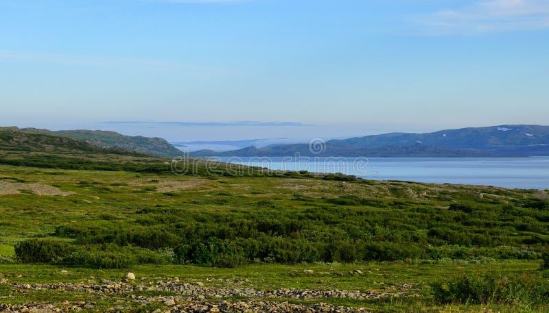 Seascape i tundra w lecie zdjęcia stock