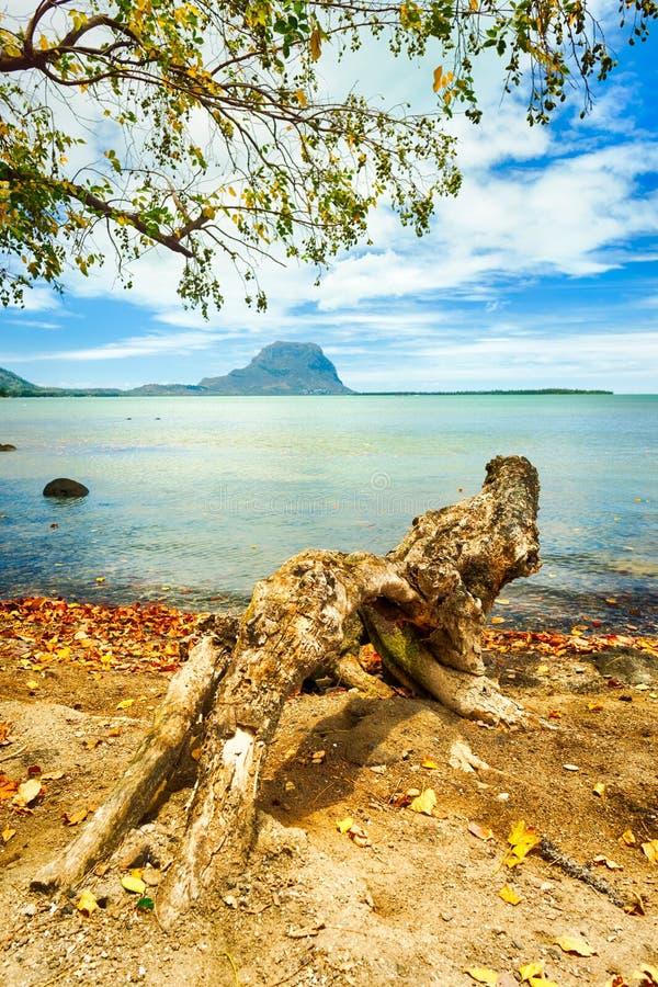 Seascape Le Morne em um fundo imagens de stock royalty free